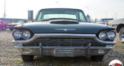 Ford Thunderbird 1964 r.