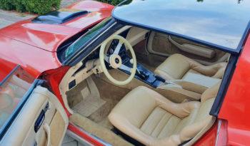 1979 Chevrolet Corvette C3 full